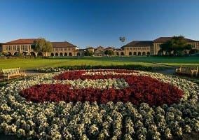 Universidad de Stanford cursos de emprendimiento y tecnología
