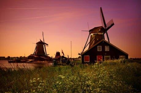 Fotografía de dos típicos molinos holandeses en el campo