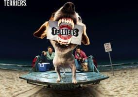 Terriers en FX