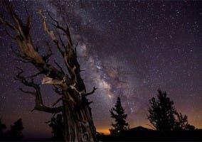 Fotografía Tomada Por Tom Lowe Para Crear El Time-lapse