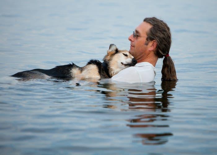 Perro artrítico lago Superior John Unger