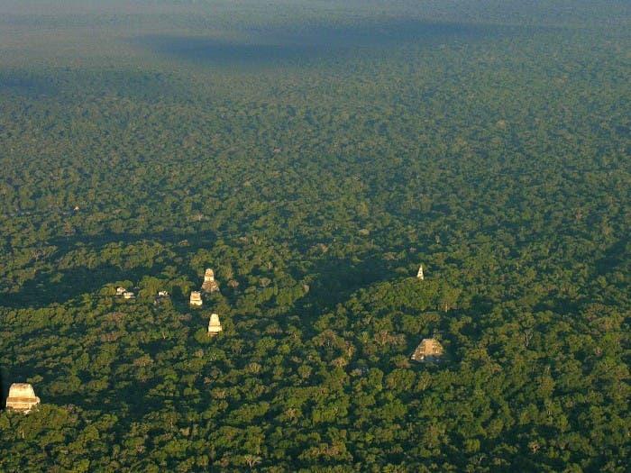Ciudad maya Tikal en Guatemala