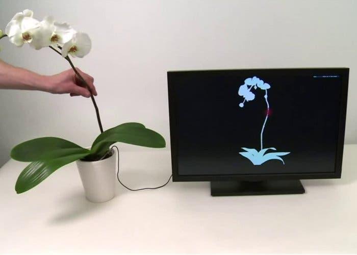 Botanicus Interacticus, las plantas táctiles de Disney