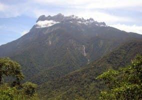 Monte Kinabalu en la selva de Borneo Malasia