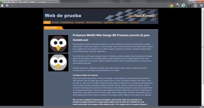 MAGIX Web Design permite visualizar desde diversos navegadores