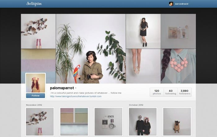 Perfil Paloma Parrot en Instagram
