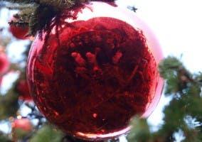 Imagen de una bola de Navidad