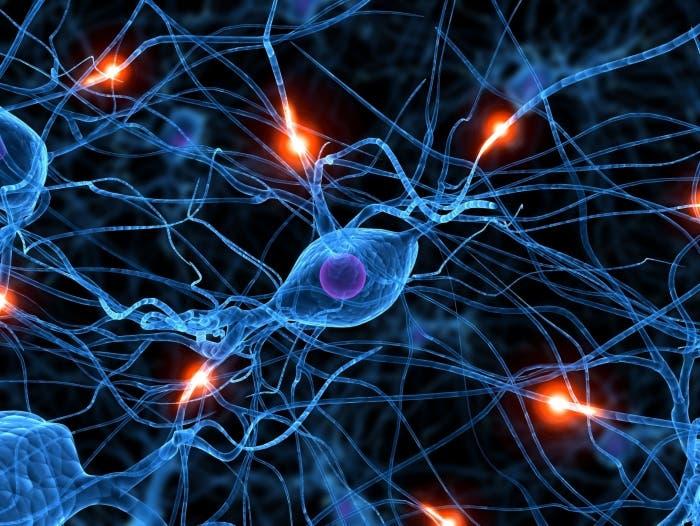 Red neuronal