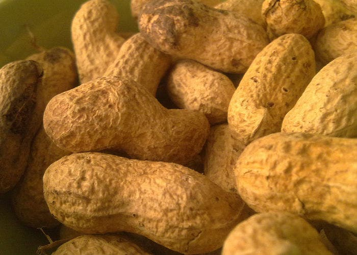 Imagen de unos cacahuetes