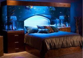 Increíble cama con acuario incorporado