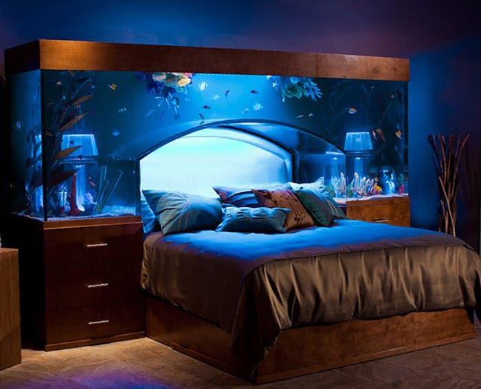 Increíble cama acuario