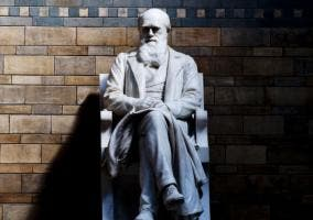 Estatua de Charles Darwin