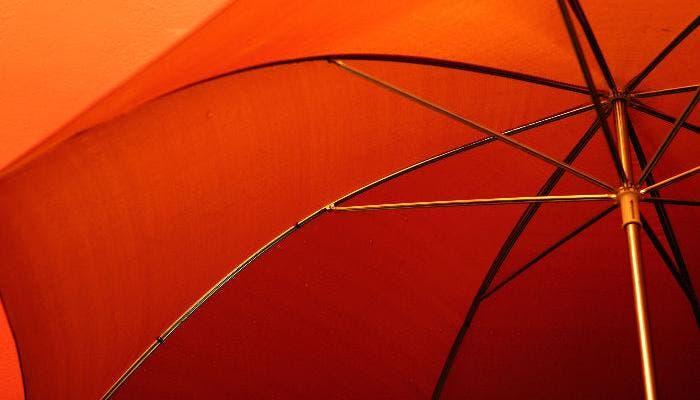 Fotografía del interior de un paraguas