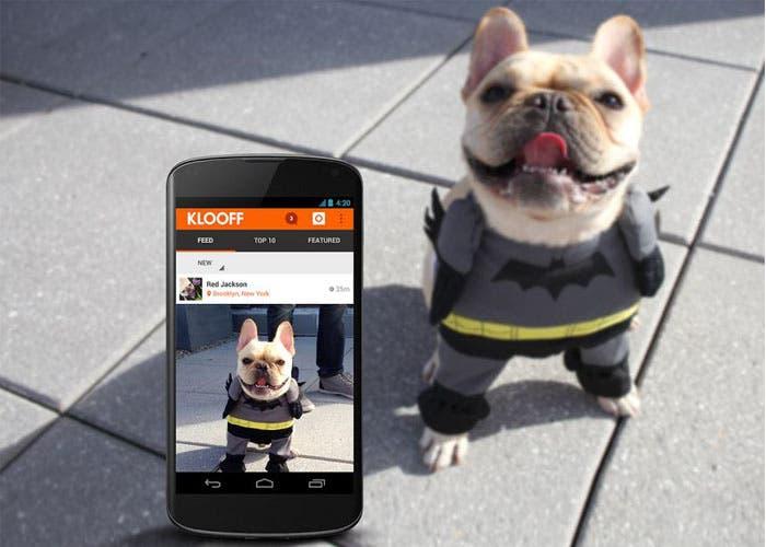 Resultado de imagen de mascotas en redes sociales