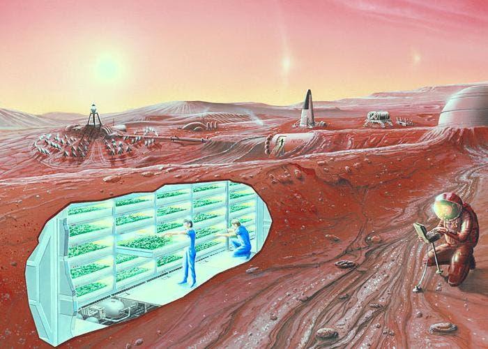 Plantas en Marte en 2021