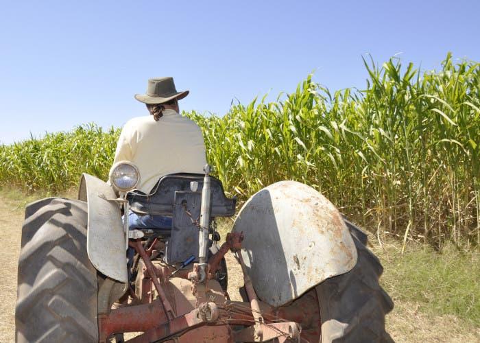 Granjero en un tractor
