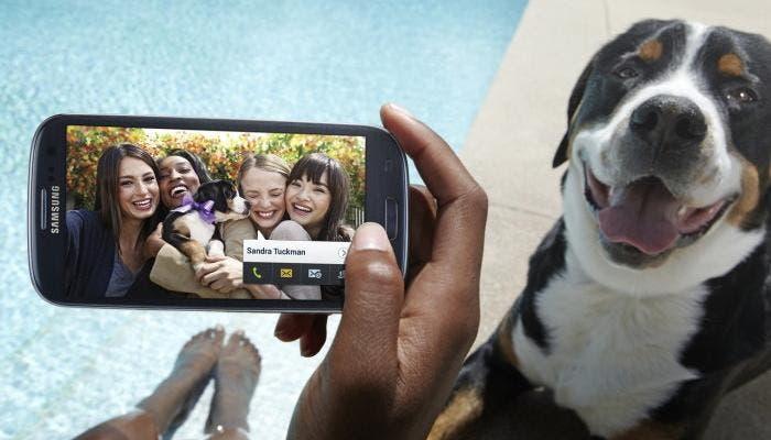 Smartphone_perro