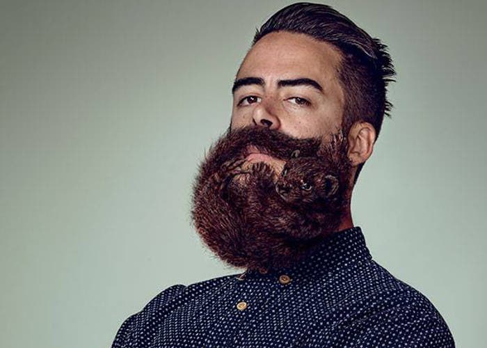 Barba de hipster con forma de animal
