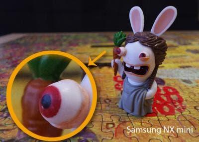 Ampliación detalle fotografía realizada con Samsung NX mini