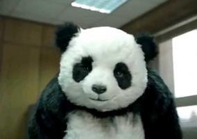 Panda Malvado
