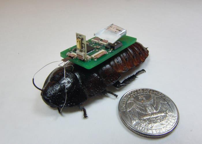 Cucaracha_robot