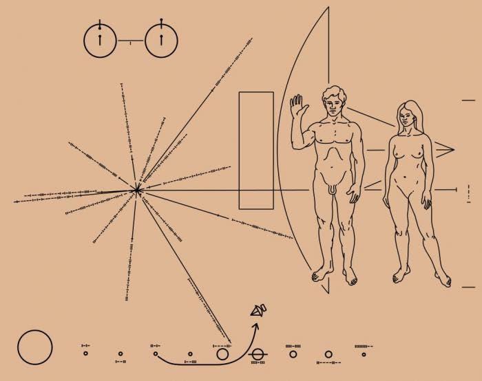 Placa de la sonda Piooner 10