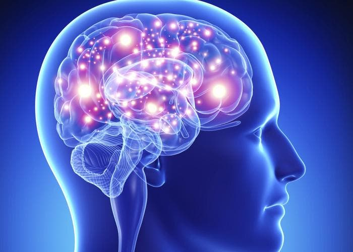 Neurociencia y obesidad
