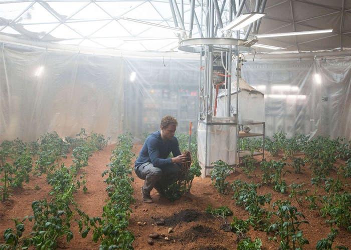 Plantando patatas para Marte