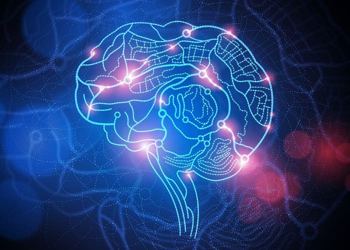 cerebro-estimulacion