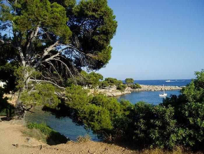 El paisaje mediterráneo, amenazado por el aumento del CO2