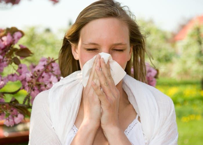 Calentamiento global causaría más alergías