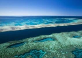 La Gran Barrera de Coral está en sus últimas según alertan los científicos
