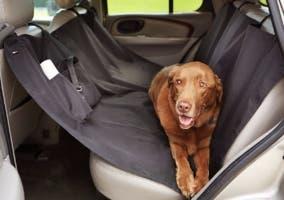 fundas de coche para perros