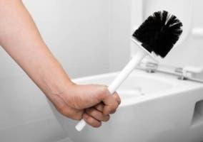 escobillas de baño