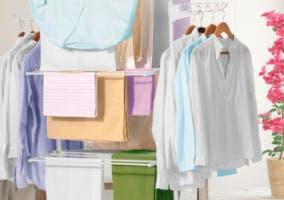Tendederos de ropa